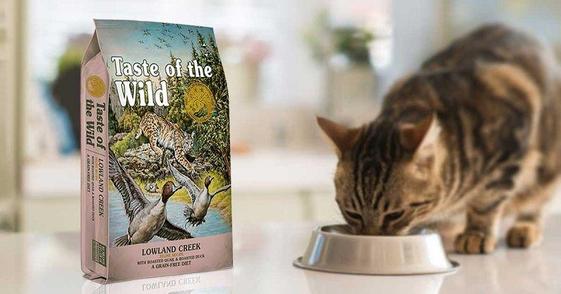 pienso para gatos taste of the wild sin cereales taste of the wild
