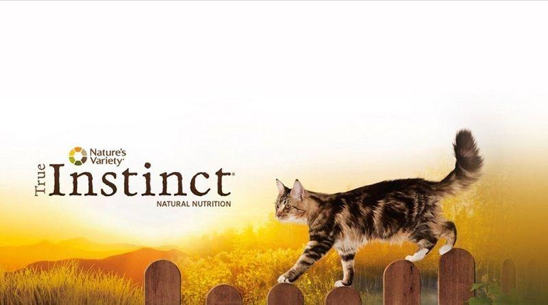 pienso true instinct gatos