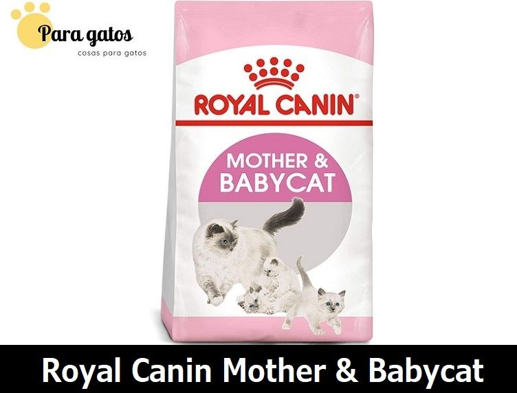 pienso royal canin mother & babycat